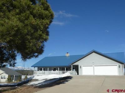 Pagosa Springs Single Family Home For Sale: 1897 N Pagosa Boulevard