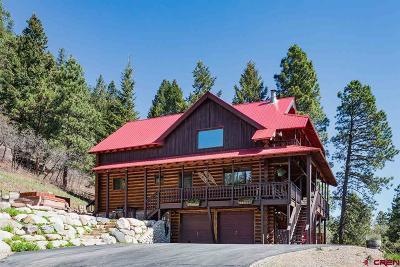Durango Single Family Home For Sale: 8961 Falls Creek Main