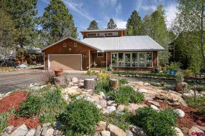 Durango Single Family Home For Sale: 197 Oak Drive