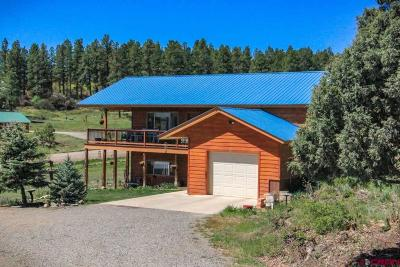 Pagosa Springs Single Family Home For Sale: 105 Terrace Drive