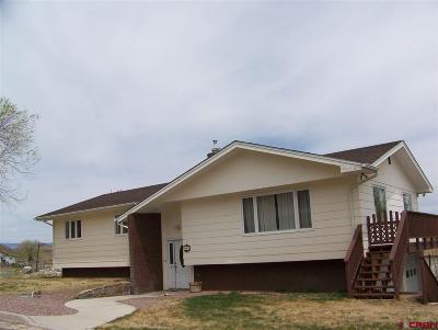 Del Norte Single Family Home For Sale: 990 Columbia