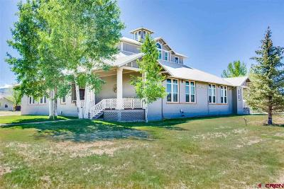 Montrose Single Family Home For Sale: 21049 Uncompahgre Road