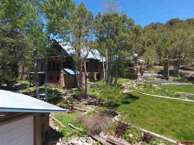 Durango Single Family Home For Sale: 358 Rainbow Road