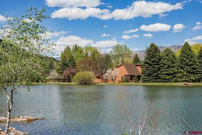 Durango Single Family Home For Sale: 102 Latigo Road