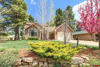 Pagosa Springs Single Family Home For Sale: 147 Lakewood Street