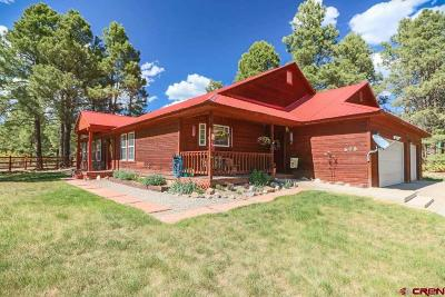 Pagosa Springs Single Family Home For Sale: 575 Antelope Avenue