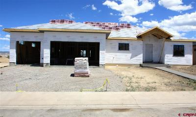 Montrose Single Family Home For Sale: 2927 Sleeping Bear Road