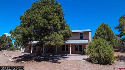 Durango Single Family Home For Sale: 2242 Cr 510