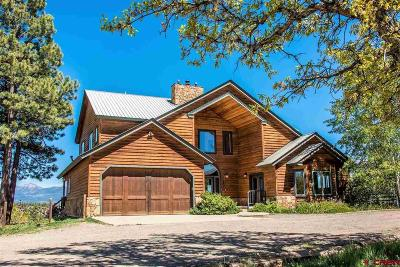 Pagosa Springs Single Family Home UC/Contingent/Call LB: 46 Bennett Court