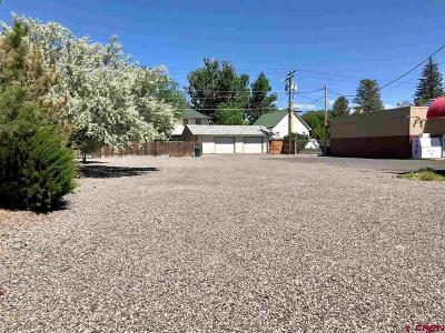 Delta Residential Lots & Land For Sale: 746 Main Street