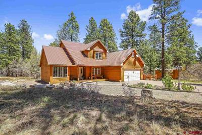 Durango Single Family Home For Sale: 270 N Lakeside Drive