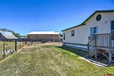 Bayfield Mobile/Manufactured For Sale: 167 Arroyo Seco Drive