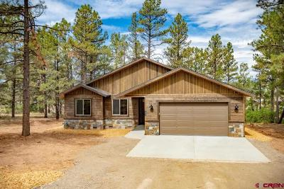 Pagosa Springs Single Family Home For Sale: 697 Monument Avenue