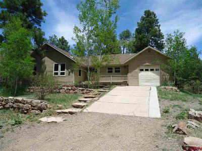 Pagosa Springs Single Family Home UC/Contingent/Call LB: 297 Pines Club