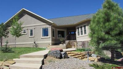 Ridgway Single Family Home For Sale: 44 Pinon Rd East