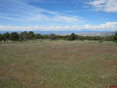 Cedaredge Residential Lots & Land For Sale: 7 Ember Road