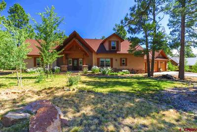 Pagosa Springs Single Family Home For Sale: 229 Stevens Circle