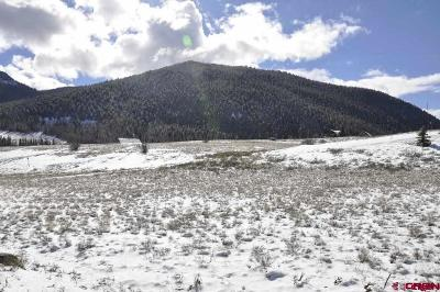 Creede Residential Lots & Land For Sale: 428 Hinshaw Drive
