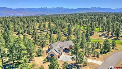 Ridgway Single Family Home For Sale: 1878 Marmot Drive