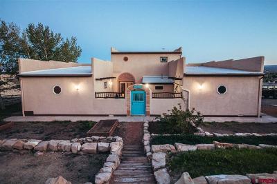 Montrose Single Family Home For Sale: 63238 Juniper Drive