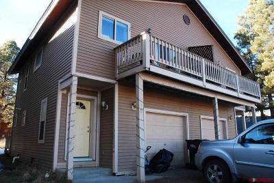 Pagosa Springs Single Family Home For Sale: 918 Cloud Cap Avenue