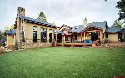 Durango Single Family Home NEW: 425 Blue Ridge