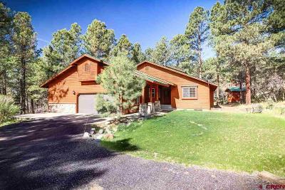 Pagosa Springs Single Family Home NEW: 956 Aspenglow Boulevard
