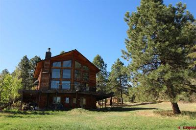 Durango Single Family Home NEW: 296 North Road