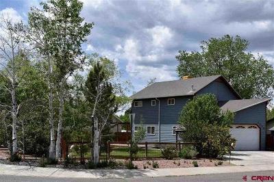 Montrose Single Family Home NEW: 2772 Cimarron Street