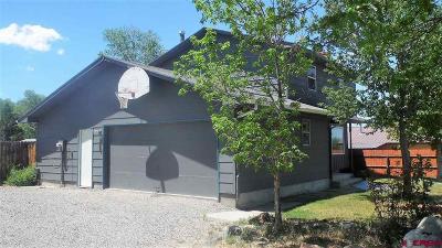 Montrose Single Family Home NEW: 1301 Centennial Drive