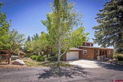 Durango Single Family Home For Sale: 921 Cr 307
