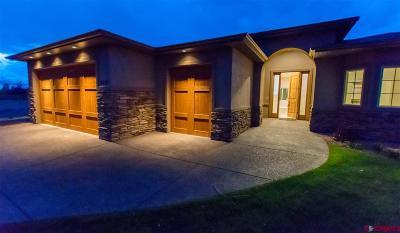 Montrose Single Family Home For Sale: 1017 Courthouse Peak Lane