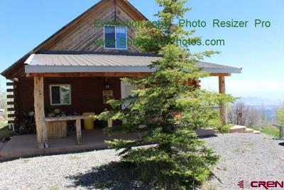Cedaredge Single Family Home For Sale: 24746 Horse Creek Road