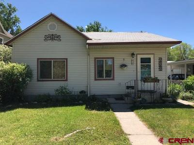 Montrose Single Family Home UC/Contingent/Call LB: 438 S 3rd Street