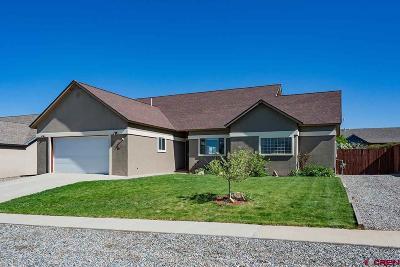 La Plata County Single Family Home UC/Contingent/Call LB: 611 Louisiana Drive