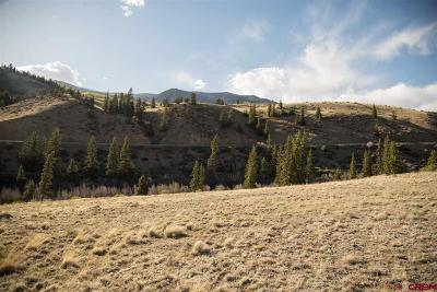 Creede Residential Lots & Land UC/Contingent/Call LB: 360 Hargraves Drive