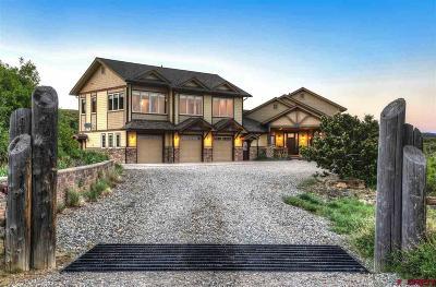 La Plata County Single Family Home For Sale: 493 Perins Peak Lane
