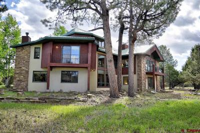 Ridgway Single Family Home For Sale: 32 Woodchuck Place