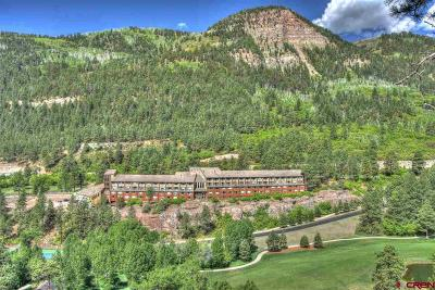 Durango Condo/Townhouse For Sale: 314 N Tamarron #110 Drive #110