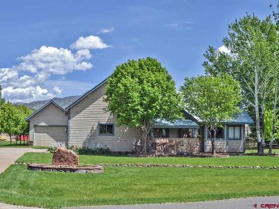La Plata County Single Family Home For Sale: 55 Valley Court