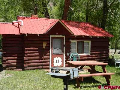 South Fork CO Single Family Home For Sale: $58,000