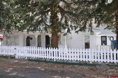 Creede Single Family Home For Sale: 204 Cliff Street
