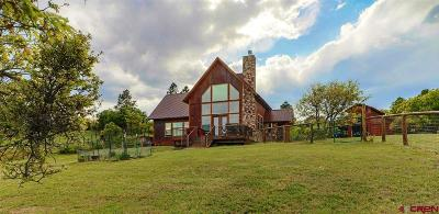 Pagosa Springs Single Family Home For Sale: 667 Soaring Eagle Ct.