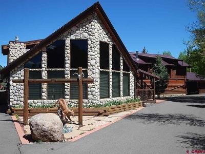 South Fork CO Single Family Home For Sale: $549,000