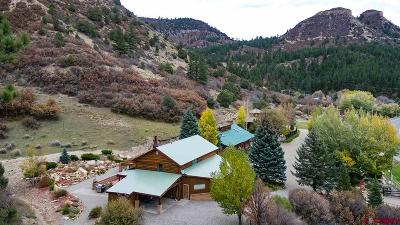 La Plata County Multi Family Home For Sale: 17895 W Hwy 160 Highway