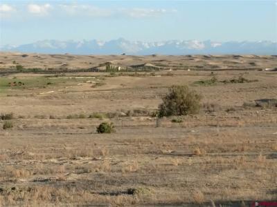 Delta Residential Lots & Land For Sale: 18 Ruth Lane