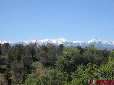 Durango Residential Lots & Land For Sale: 10 Canyon Springs Ranch Road