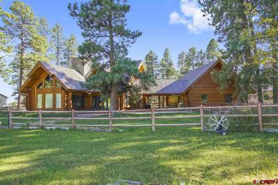 Bayfield Single Family Home UC/Contingent/Call LB: 7175 County Road 501