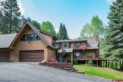 La Plata County Single Family Home For Sale: 134 Thompson Lane