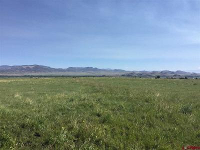 Del Norte Farm For Sale: 4 County Road 14